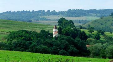 Poza Transilvania